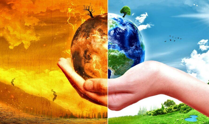 15 мая — Международный день климата