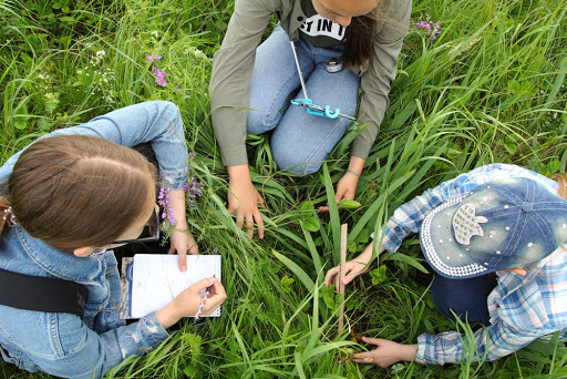Городской слет юных исследователей природы