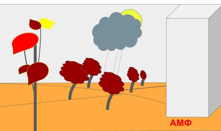 Конкурс рисунков в гугл-презентации по теме: «Осень»